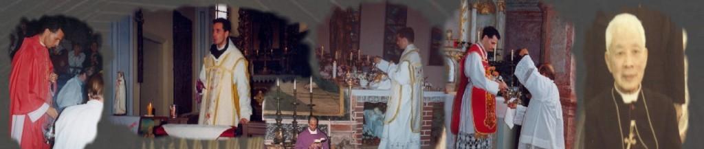 Kongregation der Herz Jesu Franziskaner